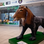 Bournemouth Lion 48 of 50