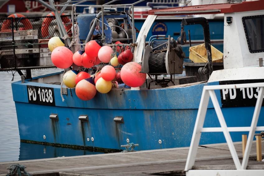 Yeah buoy